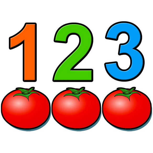 menghitung-tomat